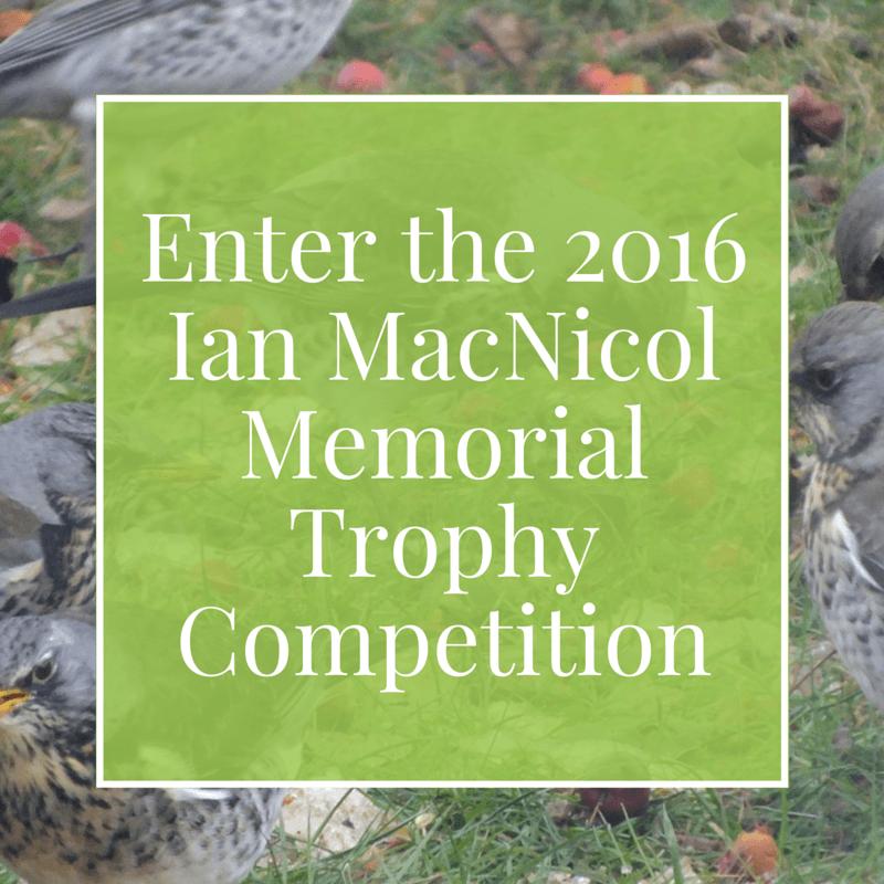 Enter the 2016 Ian MacNicol Award