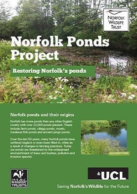 restoring ponds